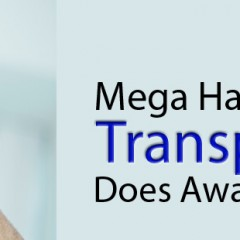 Mega Hair Transplantation Does Away Baldness